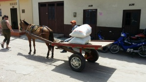 Horse drawn cart of coffee beans